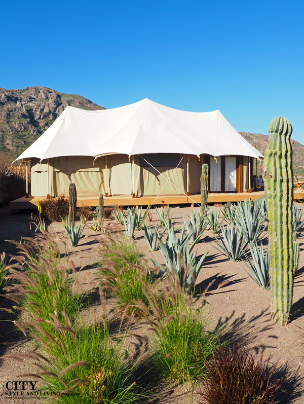 City style and living magazine style fashion blogger loreto mexico loreto desert villas palmar glamping tent