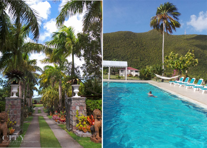 City Style and Living Magazine st kitts and nevis botanical gardens and pool at mount nevis
