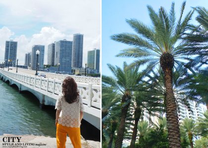 City Style and Living Magazine the Editor's Notebook Venetian Causeway Miami