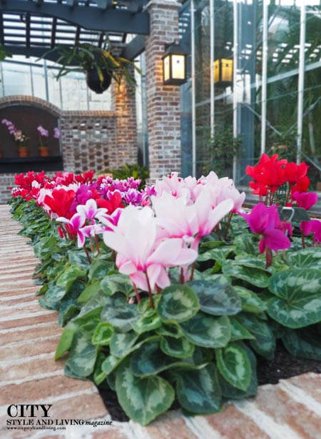 Flowers inside Lauritzen Gardens City Style and living magazine