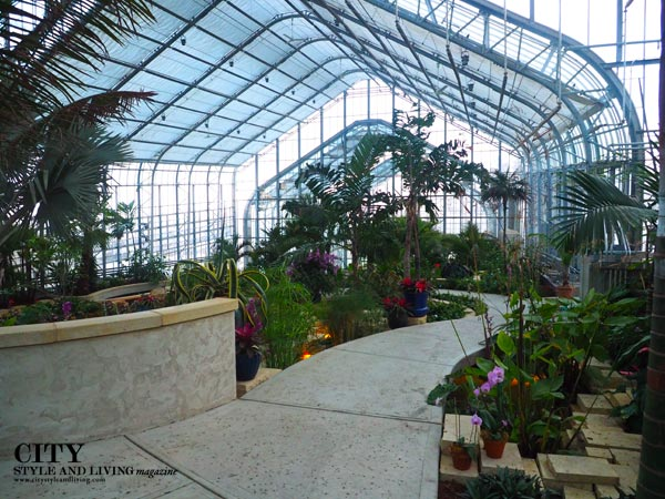 A look inside the new Marjorie K. Daugherty conservatory. City style and living magazine     A look inside the new Marjorie K. Daugherty conservatory