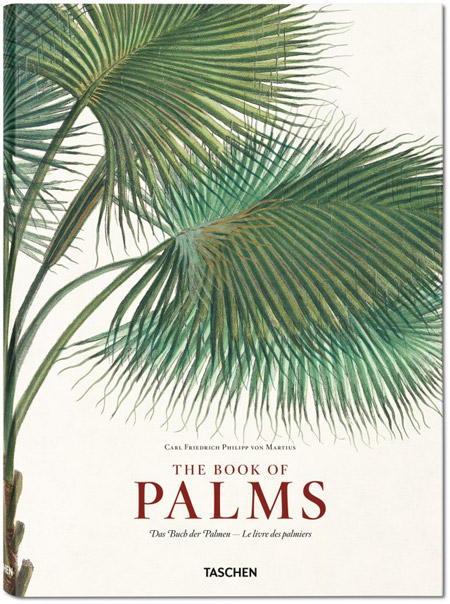 Martius Book of Palms