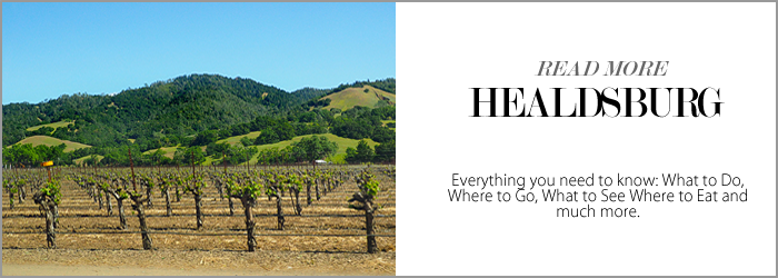 City Style and Living Magazine Healdsburg style blogger