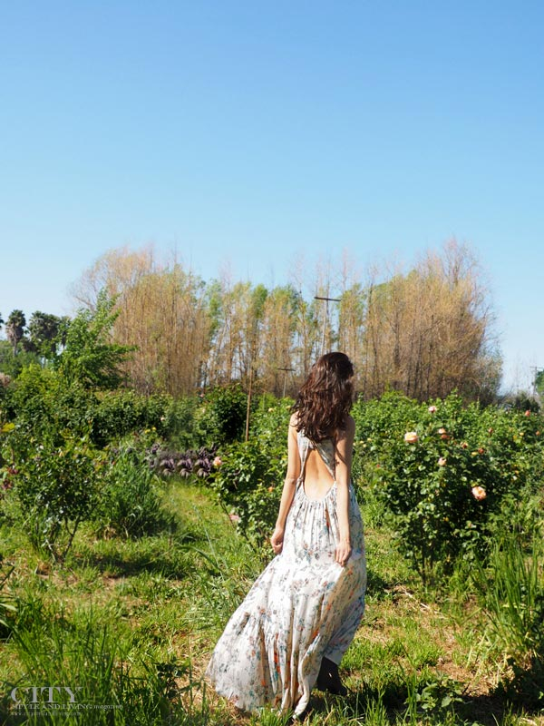 City Style and Living Magazine Dragonfly Floral fashion blogger Healdsburg maxi dress 2