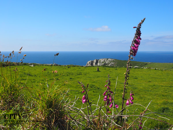 Scenic Cornwall Penwith Peninsula