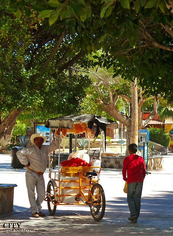Vendor in Square Loreto mexico