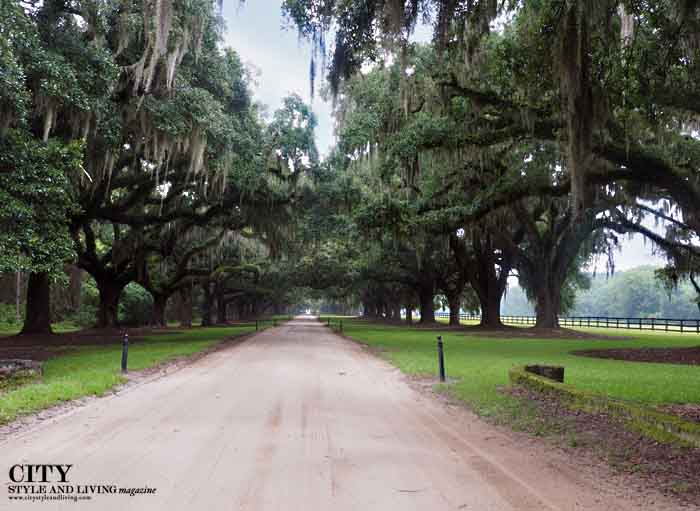 City style and living magazine style fashion blogger Boone Hall Plantation Charleston