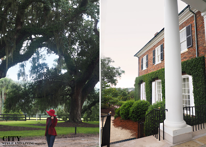 City style and living magazine style fashion blogger Boone Hall Plantation Charleston velvet