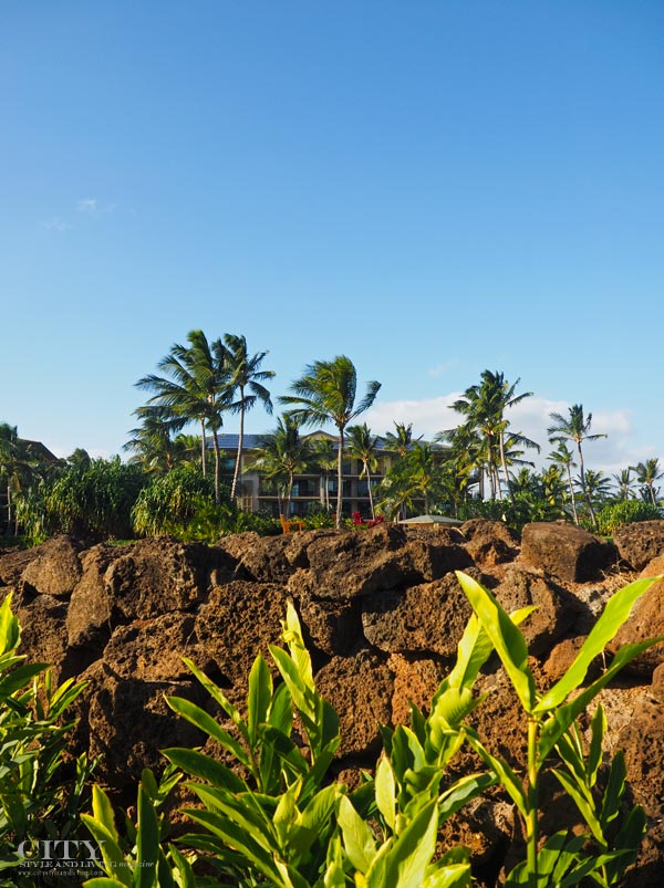 city style and living magazine Koloa Landing Lava Rock