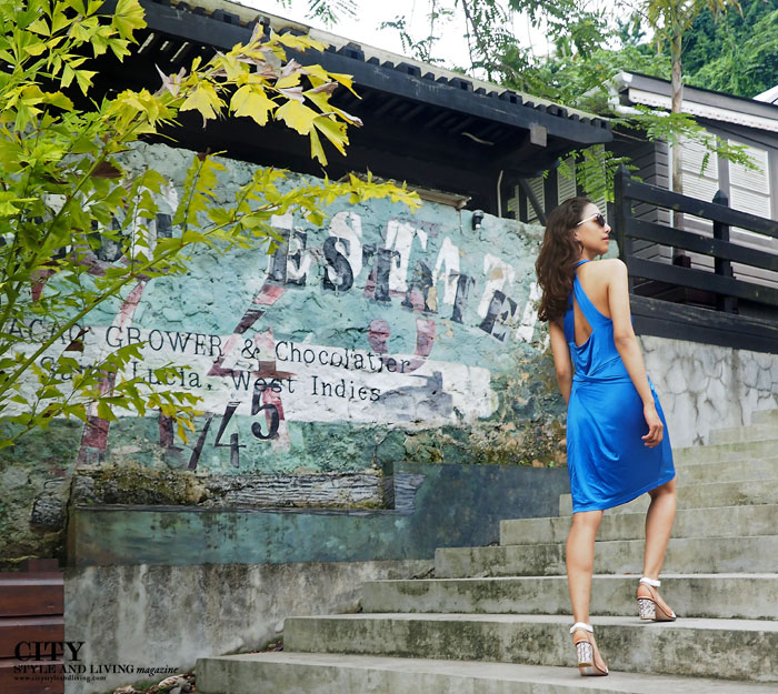 City style and living magazine style fashion blogger Saint Lucia Boucan Hotel Chocolat BCBG Max Azria wall