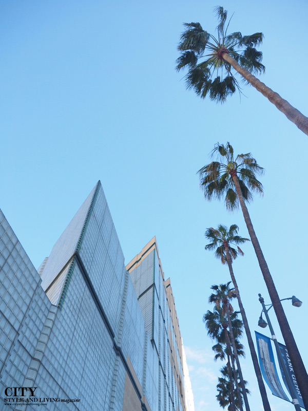 City Style and Living Magazine Palm Trees LA downtown