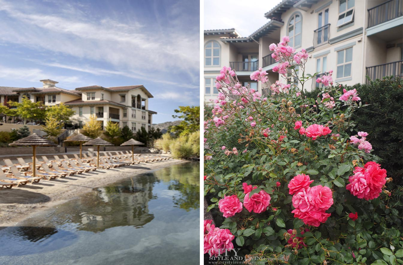 Walnut Beach Resort palapas; Beautiful roses at the hotel in City Style and Living Magazine