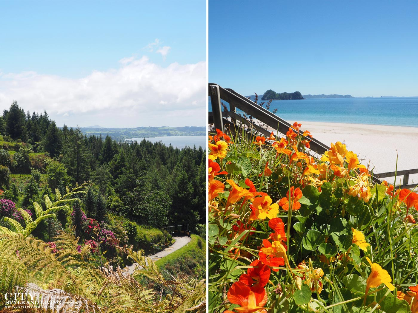 City Style and Living Magazine Destination Guide to New Zelaand The coromandel Rotorua