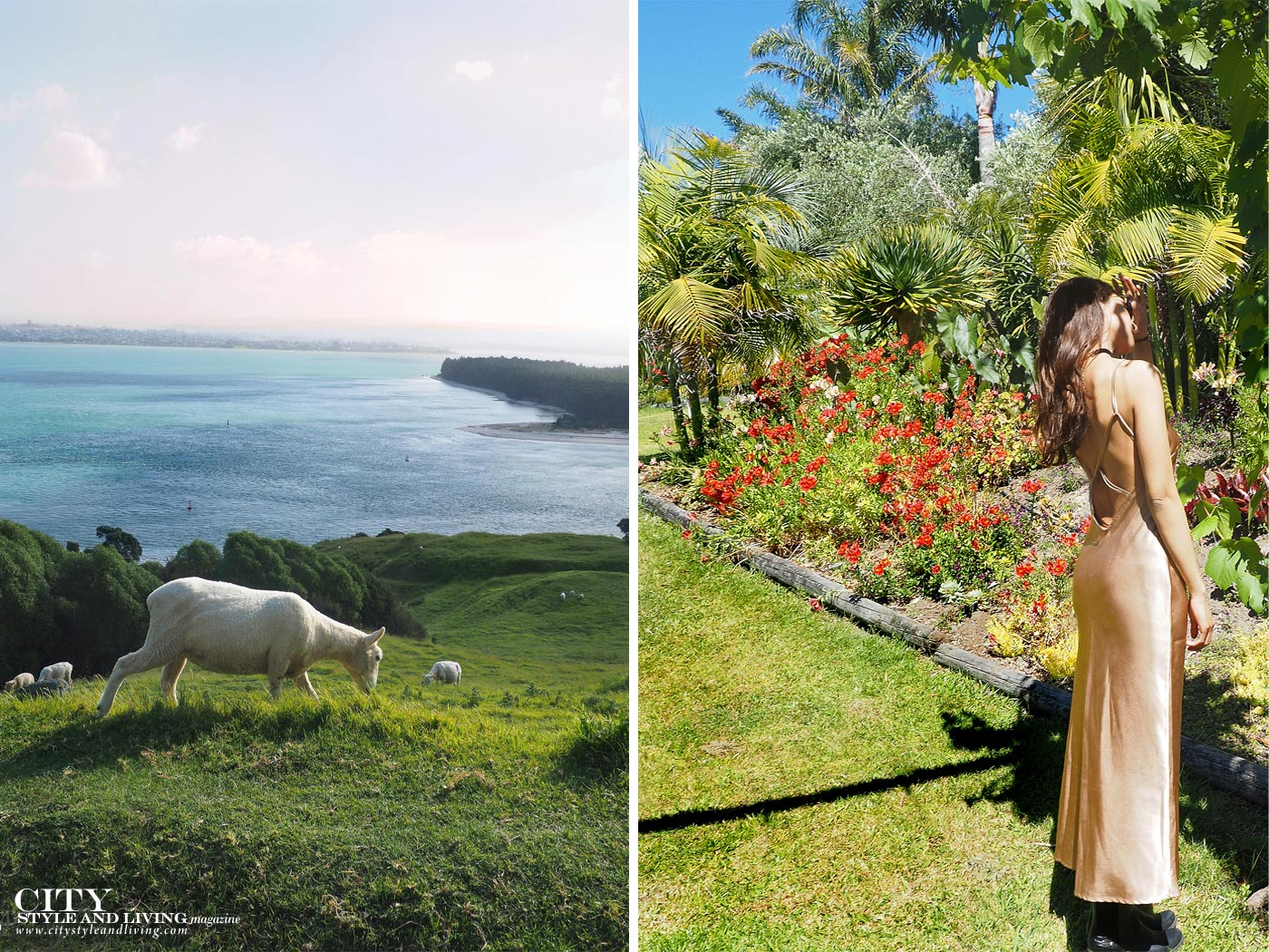 City style and living magazine Editors Notebook style fashion blogger Shivana M sheep eating grass overlooking the ocean and gold dress at mercury bay winery garden new zealand