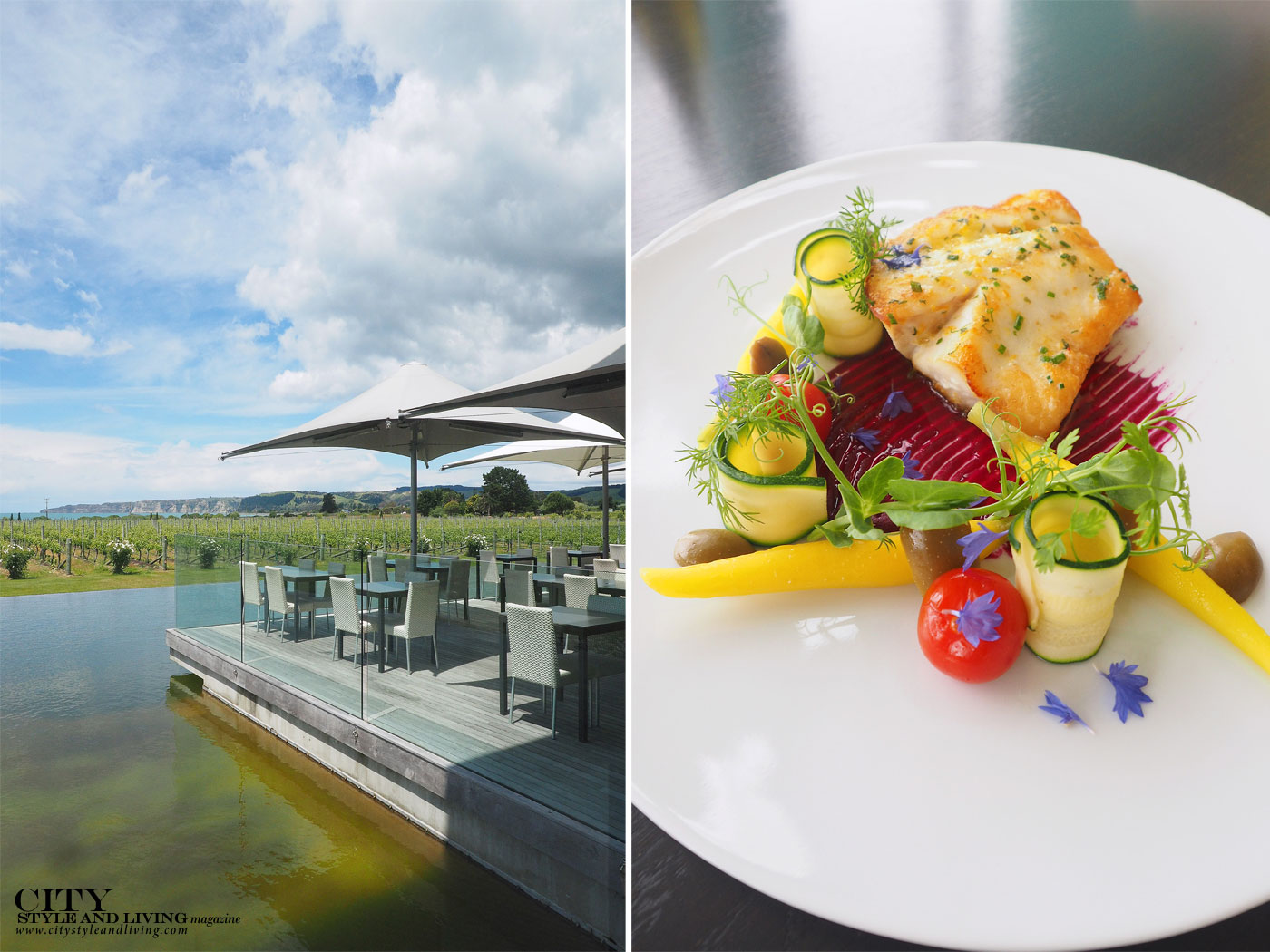 City Style and Living Magazine Elephant Hill Hawkes Bay New Zealand Vineyards and closeup of fish dish