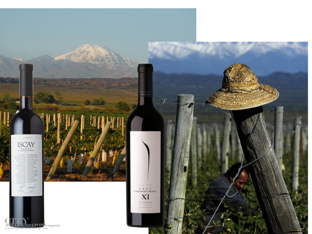 City Style and Living Magazine Argentenian Cabernet Franc