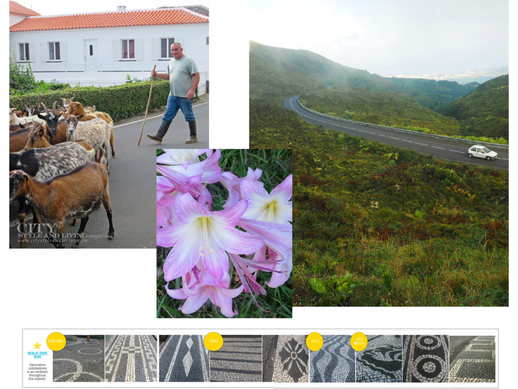 City Style and Living Magazine Travel The Azores Portugal Collage5