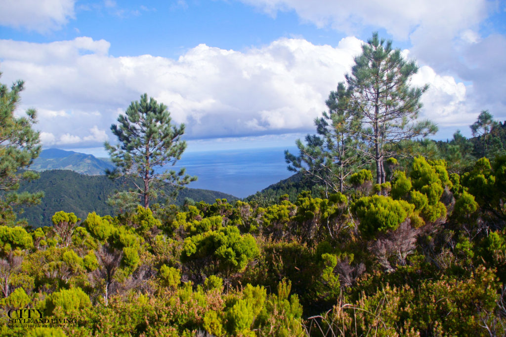 City Style and Living Magazine Travel The Azores Portugal Furnas Lake Villas View From Peak