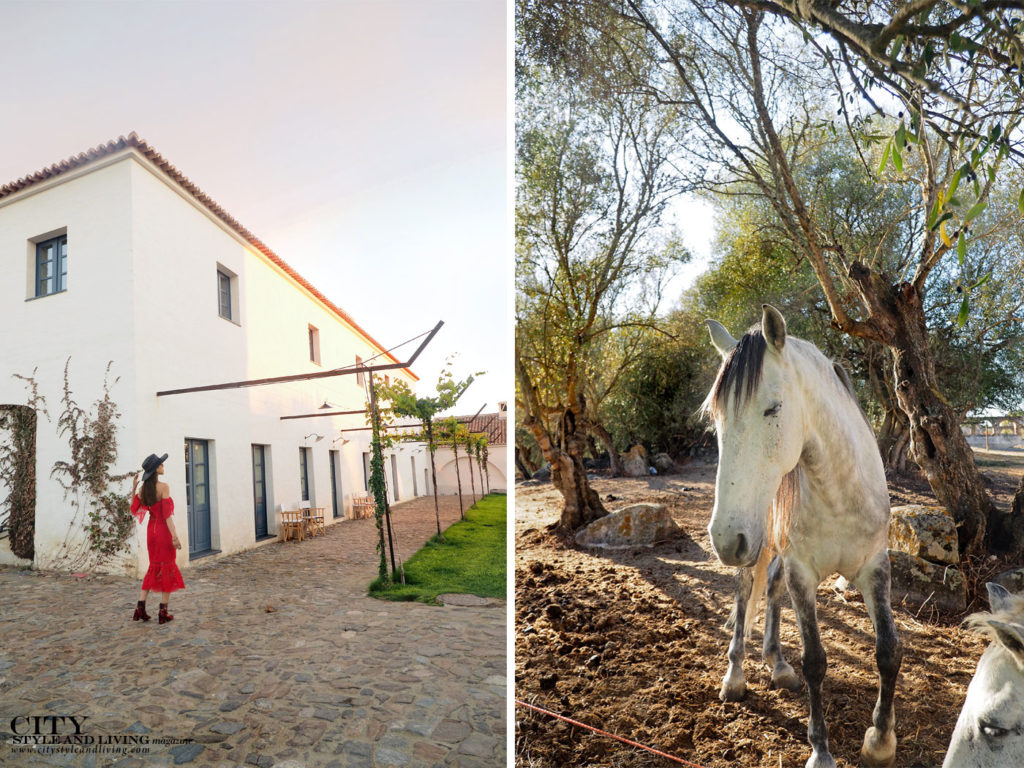 City Style and Living Magazine Travel Portugal Sao Lourenco do Barrocal Monte and white horses