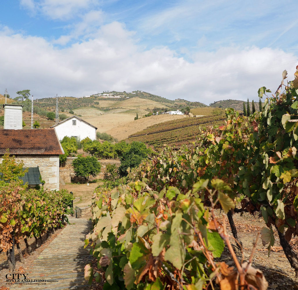 City Style and Living Magazine Travel Portugal Wine and Spirits Douro Valley Symnington Quinta do Bomfim Vineyard