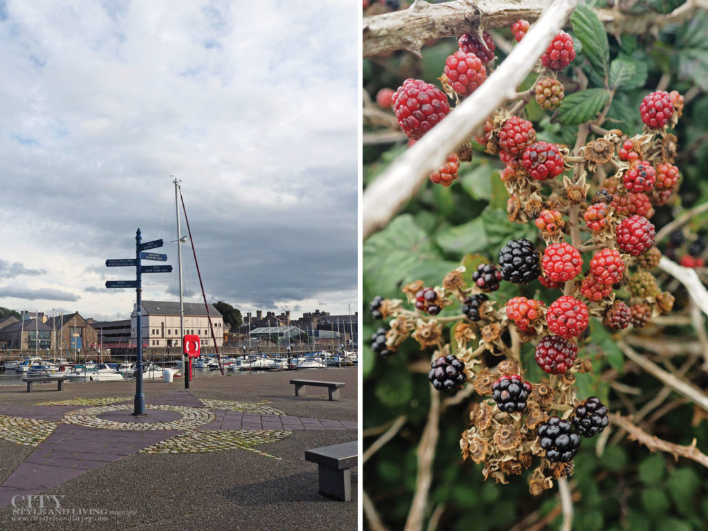 City Style and Living Magazine Winter 2018 Travel Wales Uk Snowdonia Blackberries