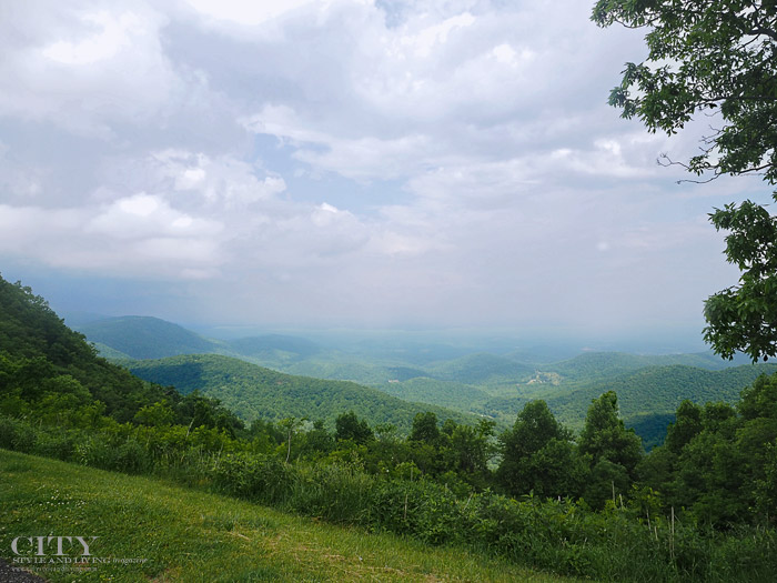 City Style and Living MagazineVirginia Blue Ridge Mountains Roanoke Virginia