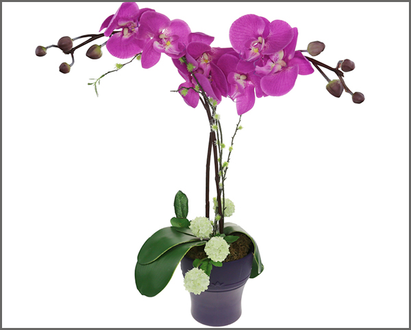 Lexliving-silicone-Collapsible-Orchid-Flower-Pot