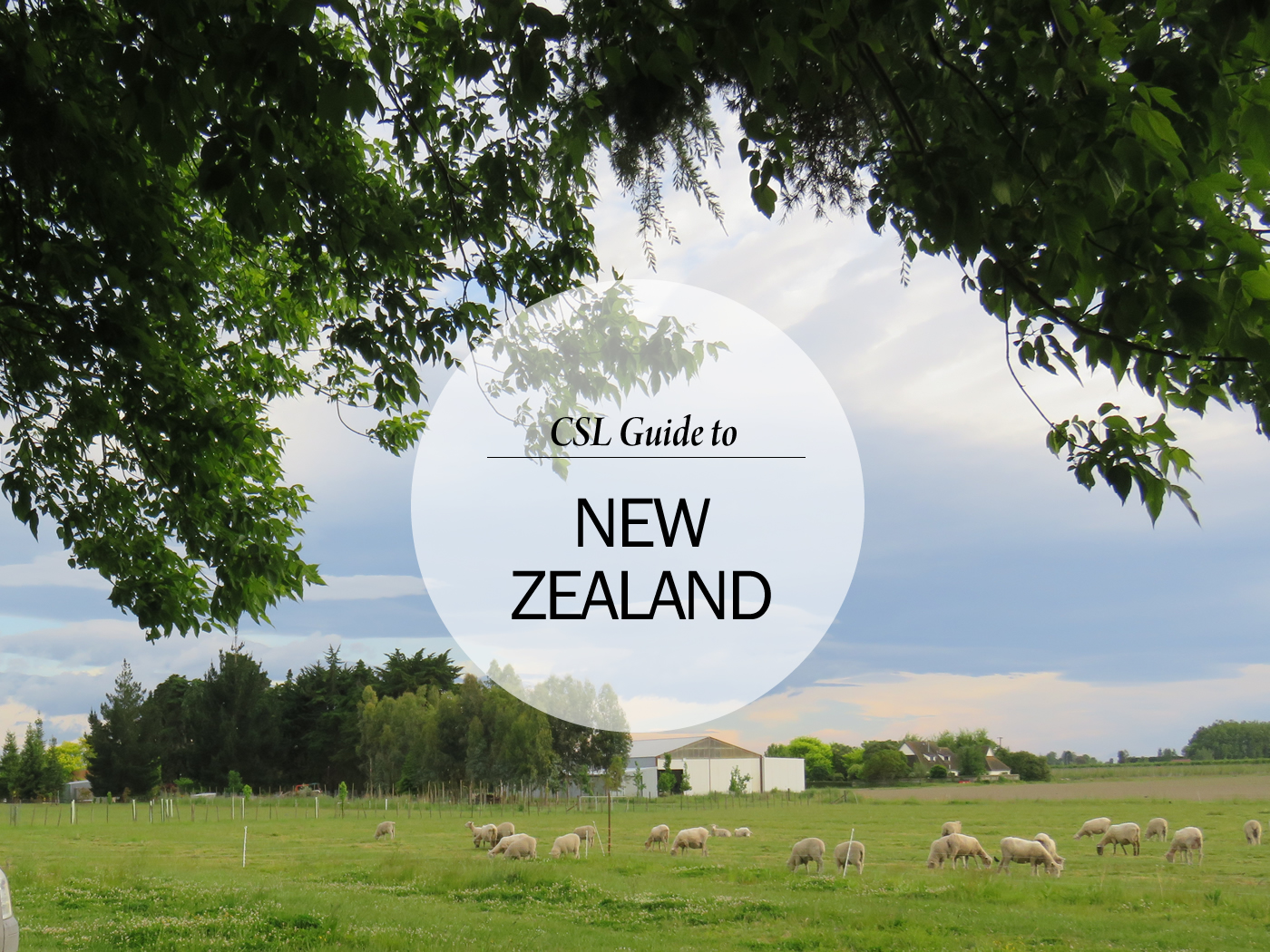 City Style and Living Magazine Destination Guide to New Zelaand