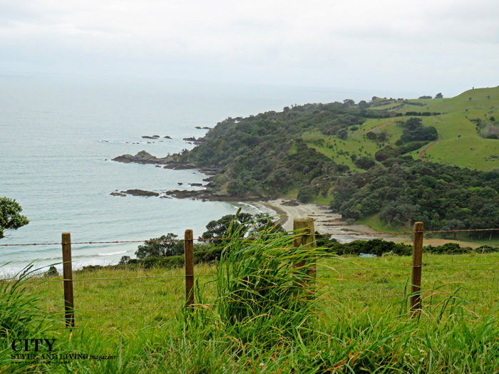 Waiheke Island New Zealand