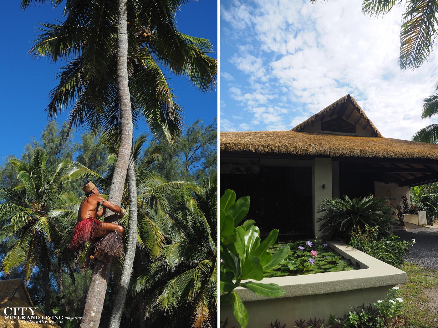 City Style and Living Magazine crown beach resort and spa coconut tree climbing and entrance