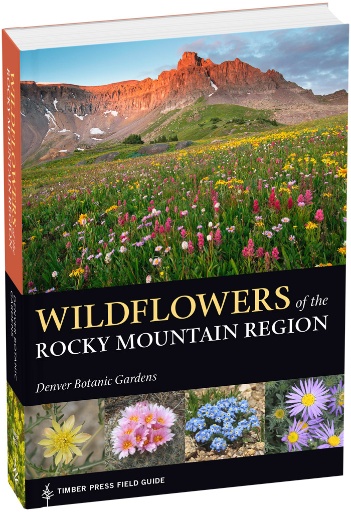 City Style and Living Magazine Travel great items for your next trip wildflowers of the rocky mountain region book