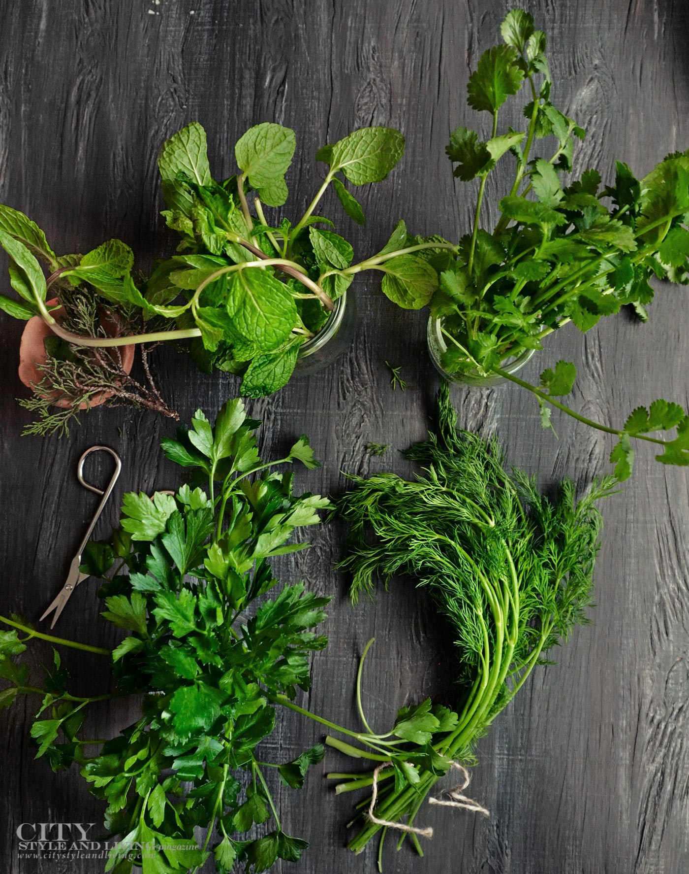 City Style and Living Magazine Food Fall 2019 Herbs to brighten any dish