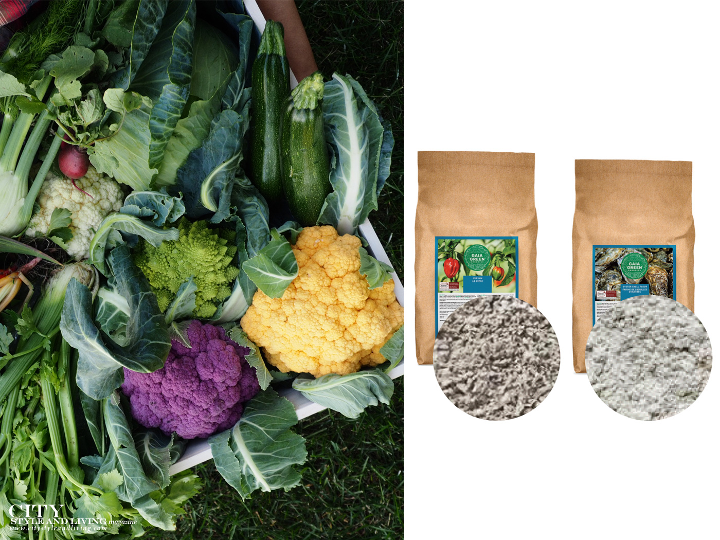 City Style and Living Magazine Winter 2020 Gardening in Fall and Winter soil types