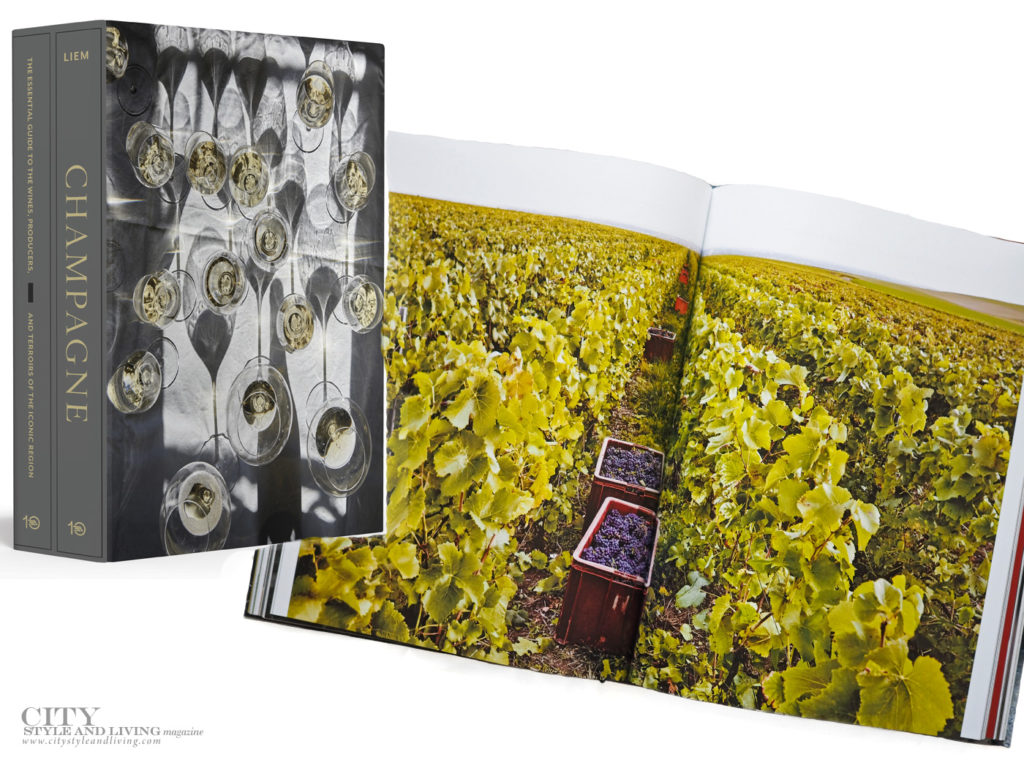 City Style and Living Summer 2021 6 Books For Summer Champagne