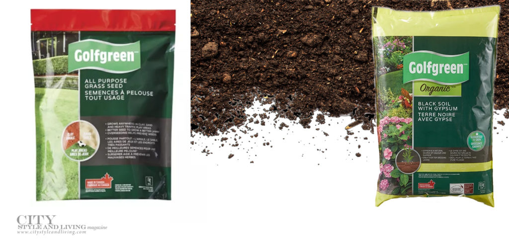 City Style and Living Summer 2021 Summer Gardening Series Grass Seed
