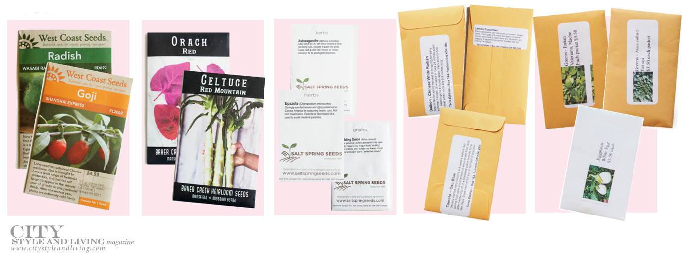 City Style and Living Summer 2021 Summer Gardening Series Seeds